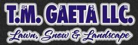tmgaeta logo